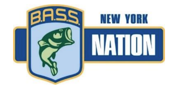 BASS Nation New York